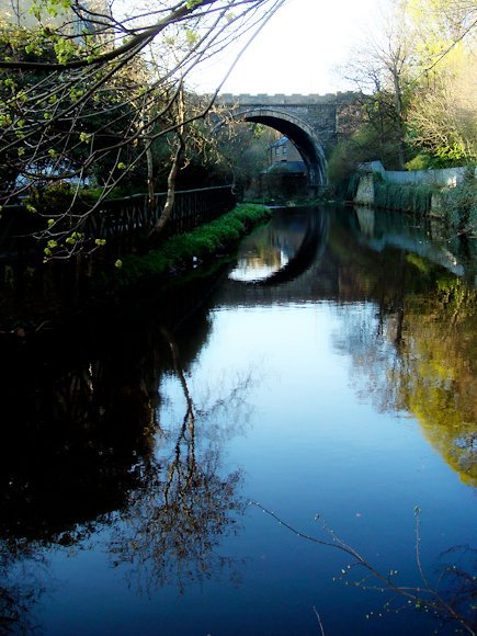Reflection on the Water of Leith