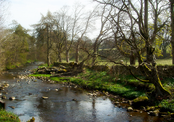 Water of Leith near Balerno