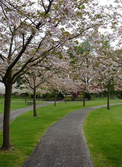 Edinburgh Kyoto Friendship Garden