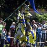 Spectacular Jousting