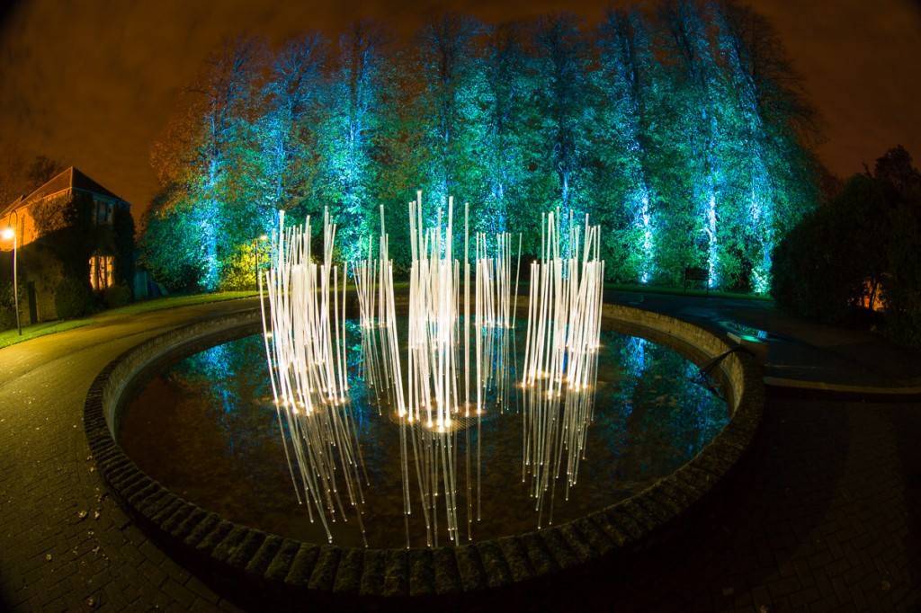 Night in the Garden