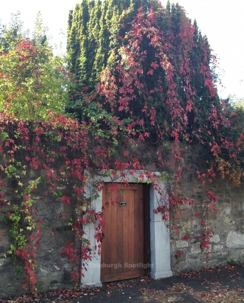 Autumn colours at Trinity