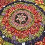 Mandala in the Botanical Gardens