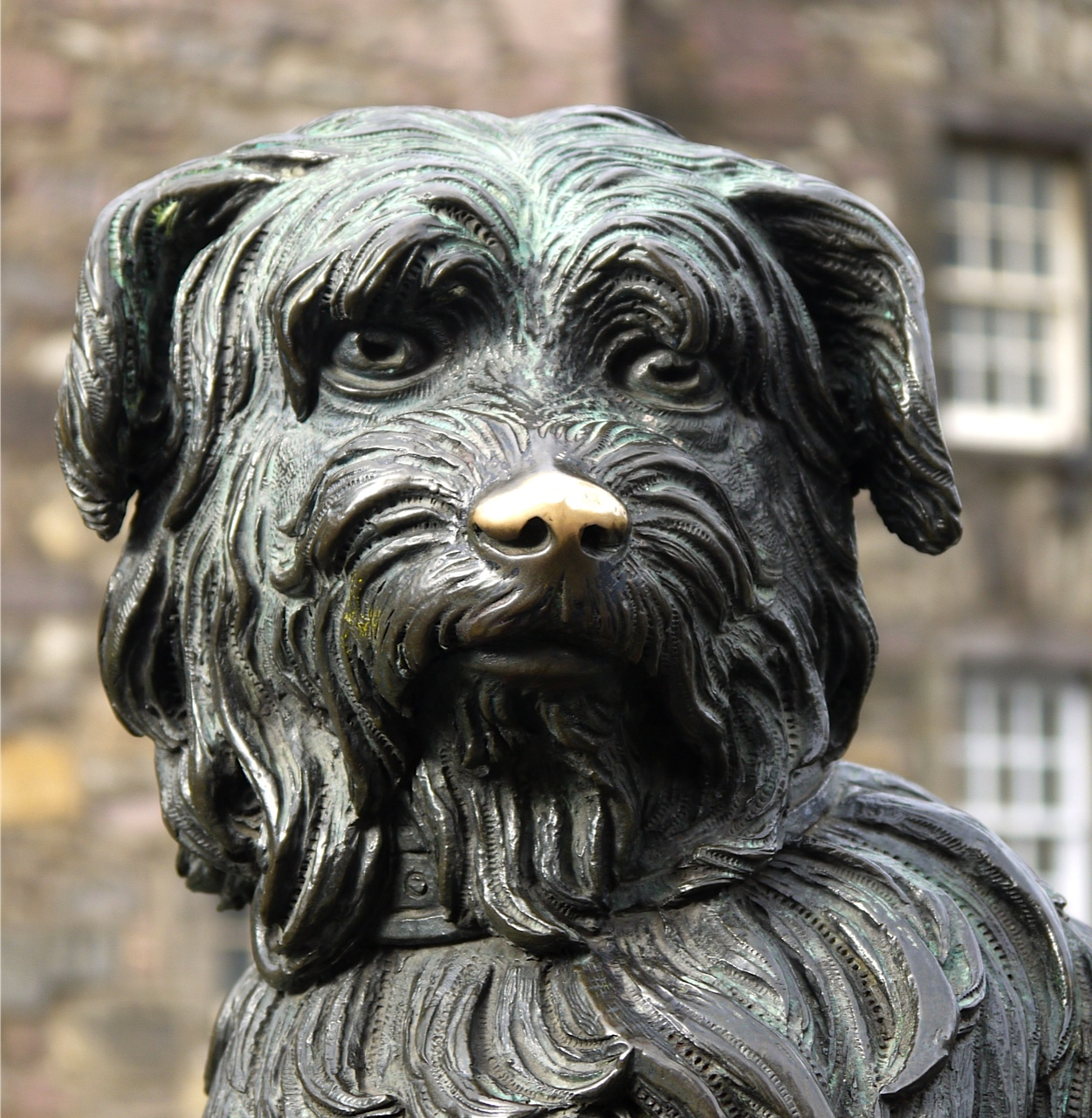 We have a statue in the memory of a dog called Bobby