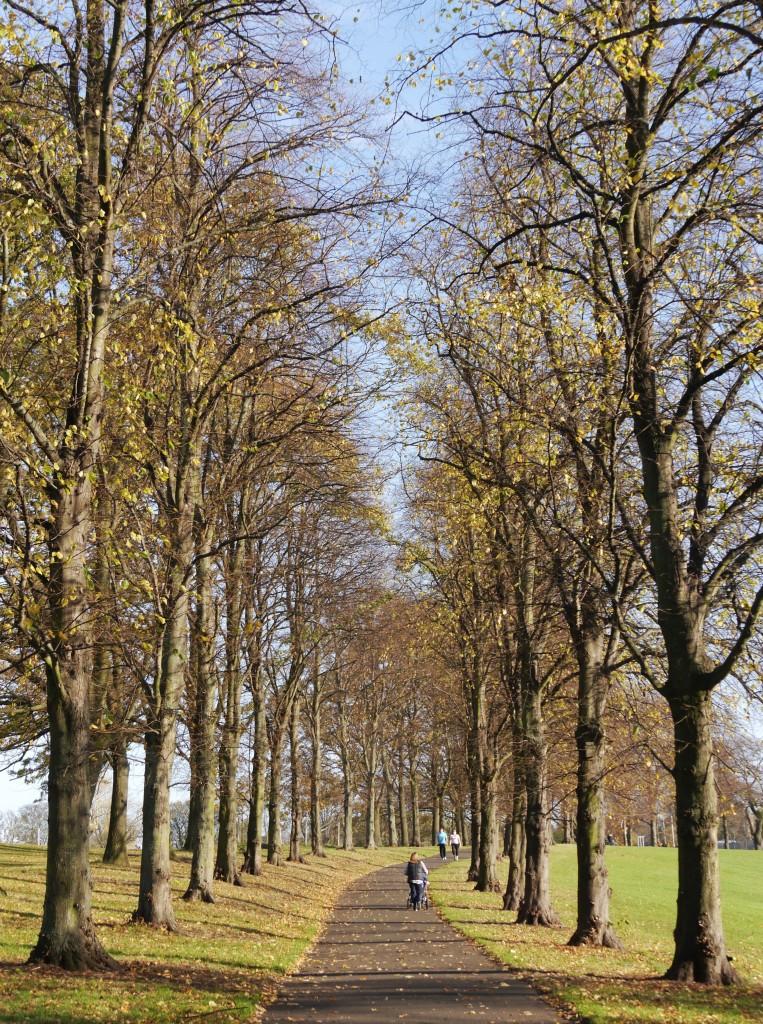 Inverleith Park