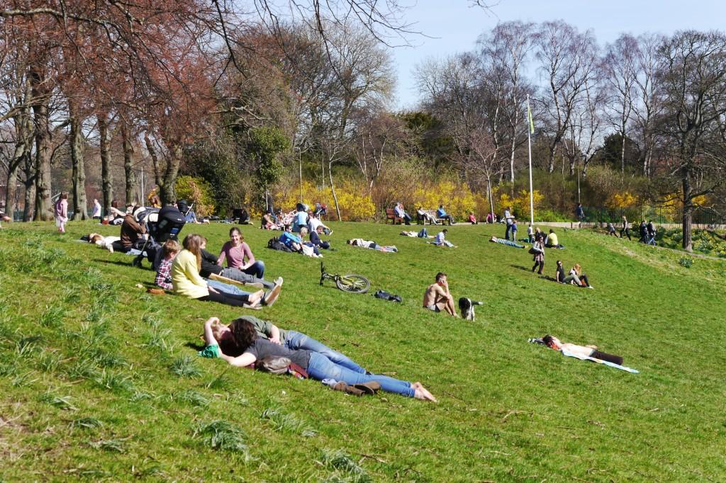 A sunny Inverleith Park