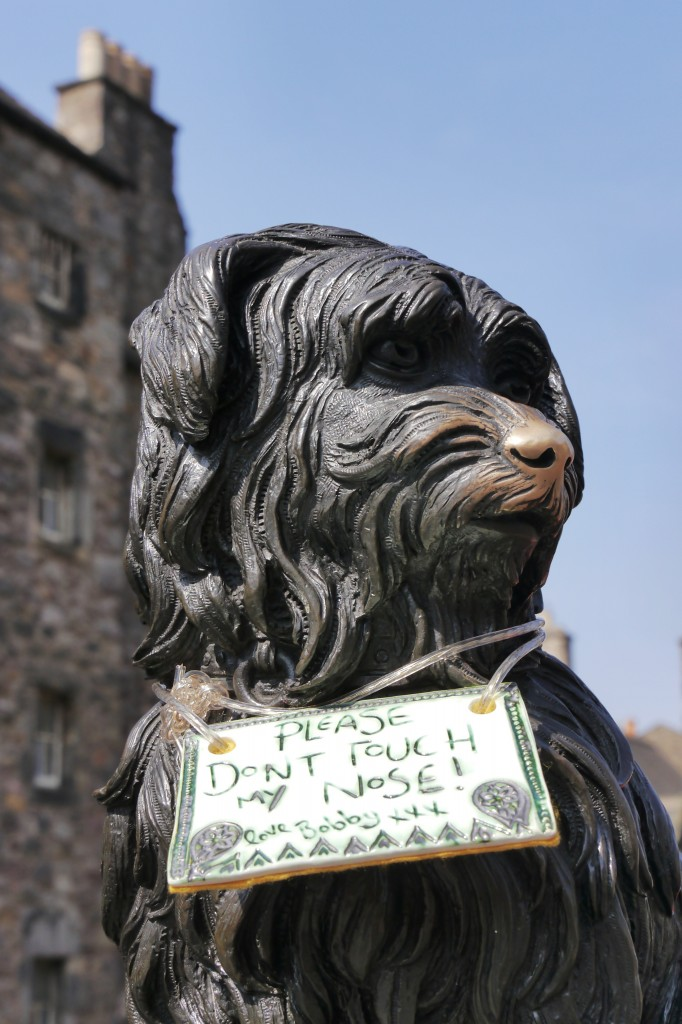 Greyfriar's Bobby with a sign asking tourists not to touch his nose