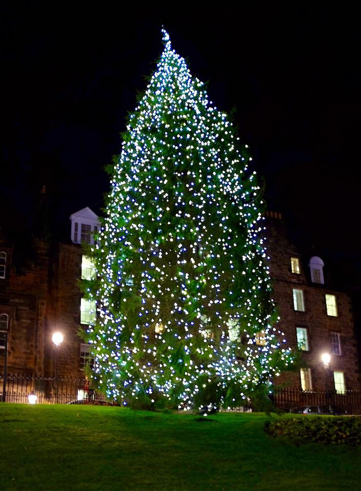 The 2015 Christmas tree on The Mound