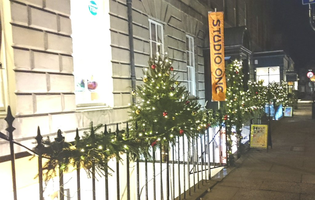 Lovely trees outside independent gift shop Studio One on Stafford Street