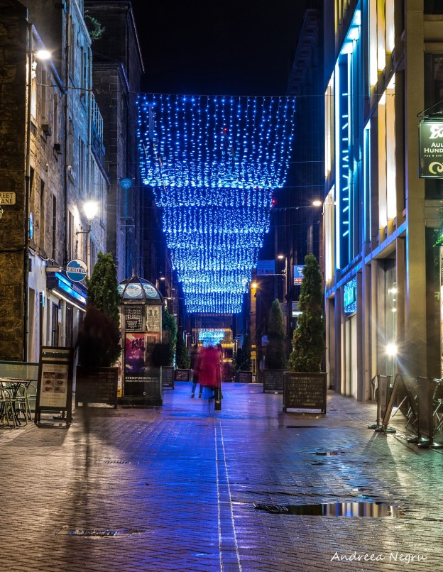 Rose Street by Andreea Negru
