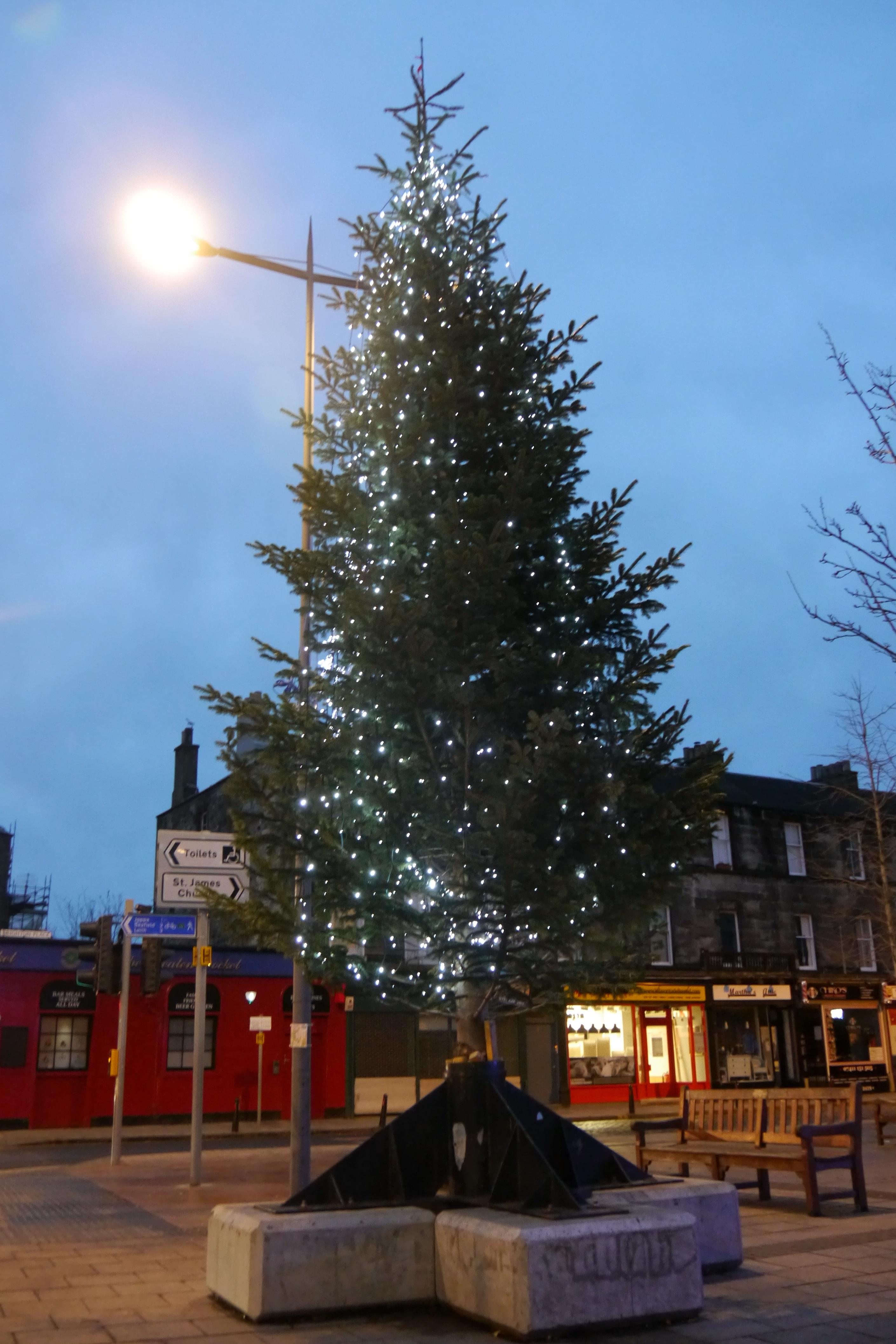 Buy Christmas Lights Online
