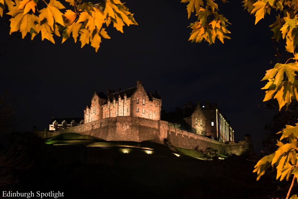 Autumn leaves and the Castle at night.