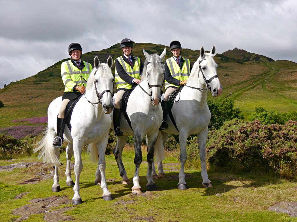 The Queen's Horses in Holyrood Park