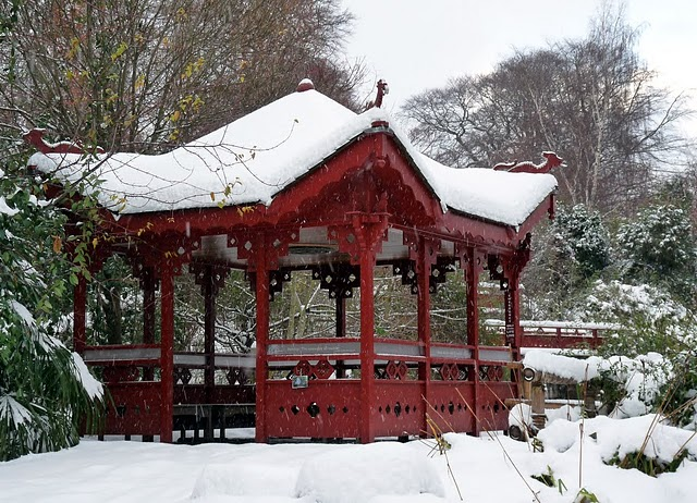 The Botanics in the snow