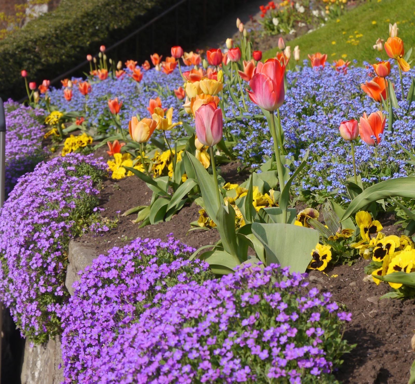 Princes St Gardens