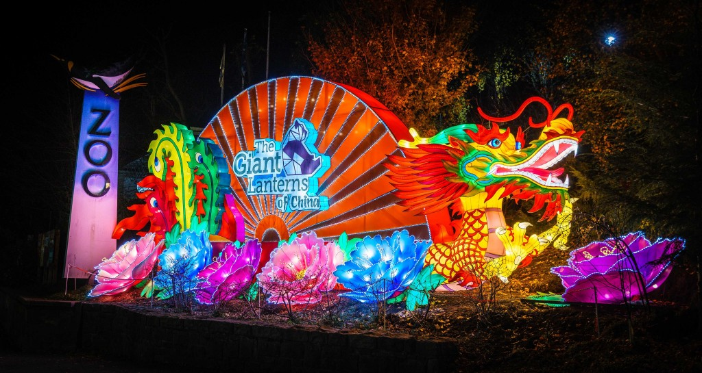 A Chinese Lantern welcome outside the zoo